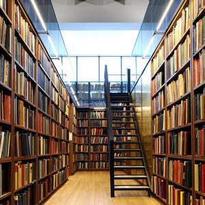 Библиотеки Беляевки